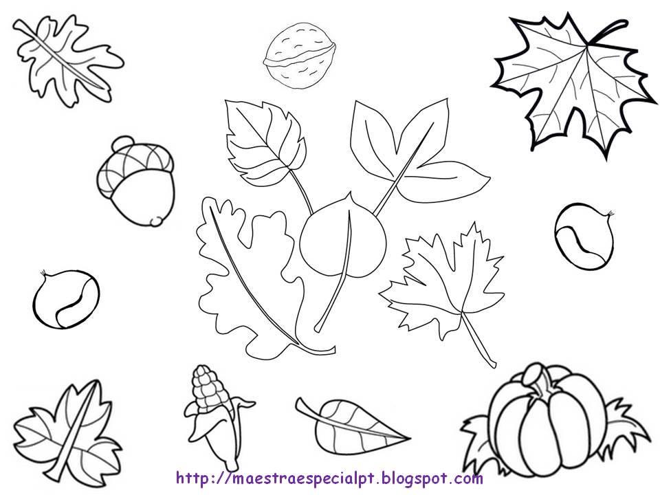 Dibujos De Castanas Para Colorear E Imprimir: Dibujos Para Colorear Del Otoño