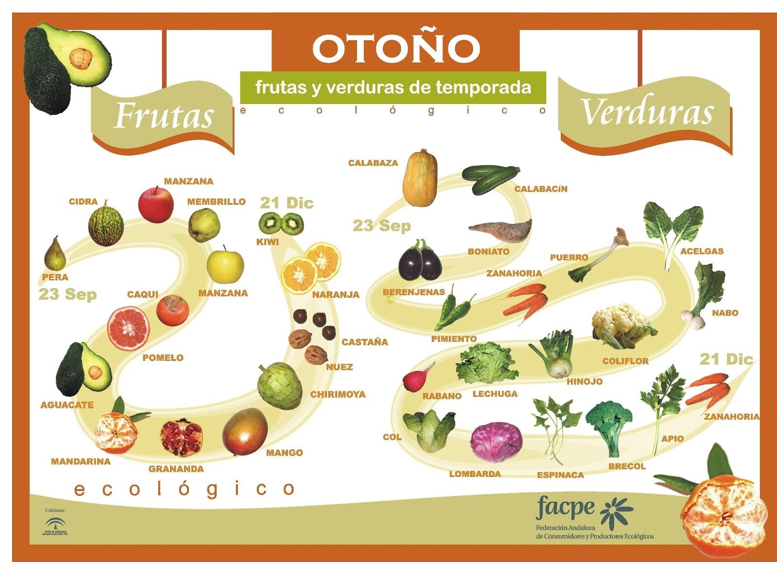 Frutos del otoño | laclasedeptdemontse