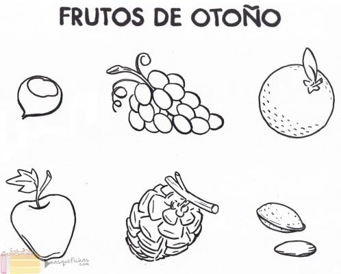 Frutos Del Otoño Laclasedeptdemontse