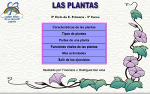plantascla - copia