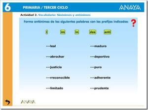 antnimos1